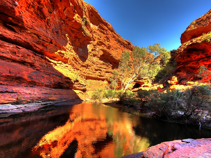 Oasis Kings Canyon Australie